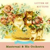 Litter Of Kittens von Mantovani & His Orchestra