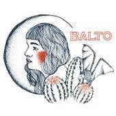 Shots in the Dark by Balto