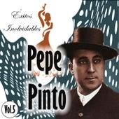 Pepe Pinto - Éxitos Inolvidables, Vol. 5 de Pepe Pinto
