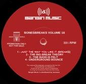 Bonesbreaks Vol 16 de Frankie Bones