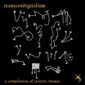 Transcendigitalism by Various Artists