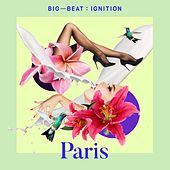 Big Beat Ignition: Paris by Various Artists