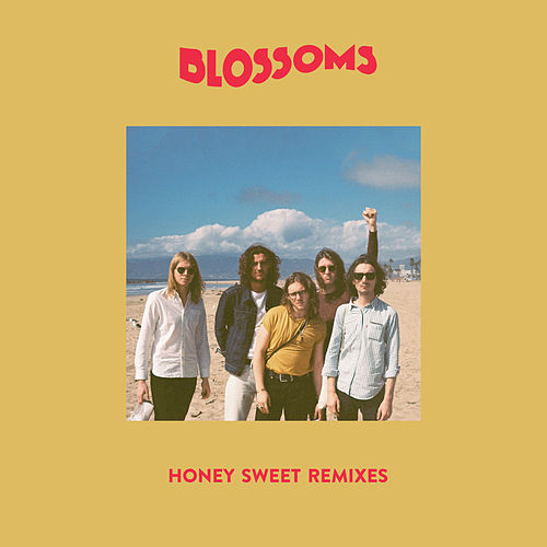 Honey Sweet (The Revenge Remix) by Blossoms