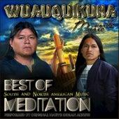 Wuauquikuna:  Best of South and North American Music Meditation de Wuauquikuna