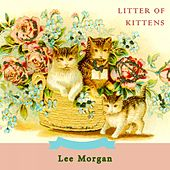 Litter Of Kittens by Lee Morgan