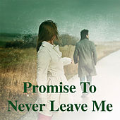Promise To Never Leave Me by Various Artists