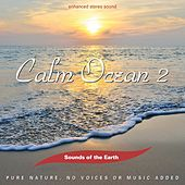 Calm Ocean 2 de Sounds Of The Earth