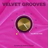 Velvet Grooves 16 Volume Sextone von Various Artists