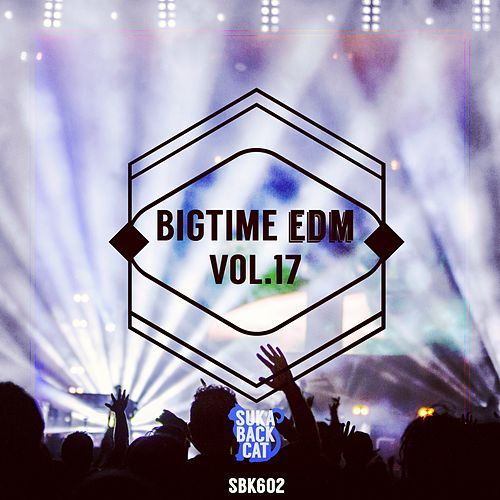 Bigtime EDM, Vol. 17 by Various Artists