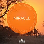 Miracle by Francesco Digilio
