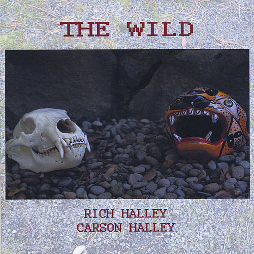 The Wild (feat. Carson Halley) by Rich Halley