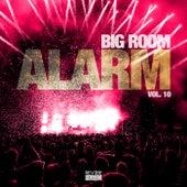 Big Room Alarm, Vol. 10 de Various Artists