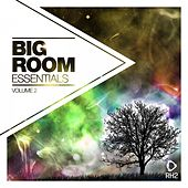 Big Room Essentials, Vol. 2 von Various Artists