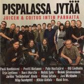 Pispalassa jytää - Juicen & Coitus Intin parhaita de Various Artists