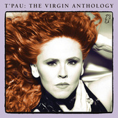 Hold On To Love (Acoustic Version) van T'Pau