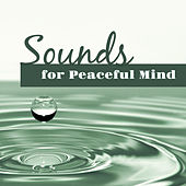 Sounds for Peaceful Mind – Relaxing Nature Sounds, New Age Music to Rest, Easy Listening, Chill Yourself de Sounds Of Nature