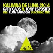 Kalimba de Luna 2k14 de Tony Esposito
