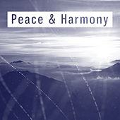 Peace & Harmony – Relaxing New Age Music, Deep Relaxation, Stress Free, Inner Journey de Healing Sounds for Deep Sleep and Relaxation