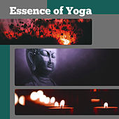 Essence of Yoga – Yoga Music, Deep Meditation, Relaxing Sounds, Helpful for Rest and Meditate by Yoga Music