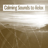 Calming Sounds to Relax – Rest with New Age Music, Soft Sounds, Easy Listening by Nature Sound Series