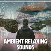 Ambient Relaxing Sounds – Calming Waves, Stress Relief, New Age Meditation, Spirit Free by Ambient Rain