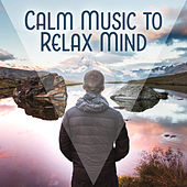 Calm Music to Relax Mind – Soft Sounds, Silent Music, New Age Relaxation, Chakra Balancing de Nature Sounds Artists
