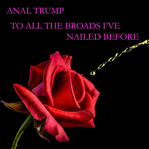 To All the Broads I've Nailed Before by Anal Trump