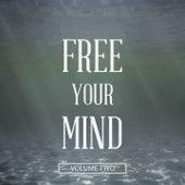 Free Your Mind, Vol. 2 (Don't Think.. Enjoy) de Various Artists
