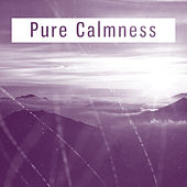 Pure Calmness – Soothing Sounds of Nature, Relaxing Music, New Age, Ambient Relax, Instrumental Music by Calming Sounds
