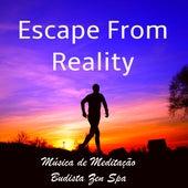 Escape From Reality - Música de Meditação Budista Zen Spa para Treinamento da Mente Cura Espiritual com Sons Naturais Instrumentais New Age by Various Artists