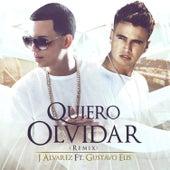 Quiero Olvidar (Remix) de J. Alvarez