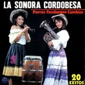 Porros-Fandangos-Cumbias de La Sonora Cordobesa