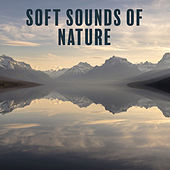 Soft Sounds of Nature – Calming Sounds, Nature Relaxation, New Age, Rest Music, Stress Free by Relaxing Sounds of Nature
