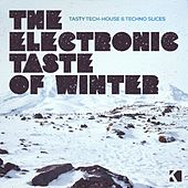 The Electronic Taste of Winter (Tasty Tech-House & Techno Slices) de Various Artists