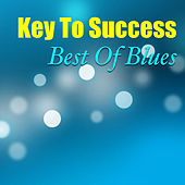Key To Success: Best Of Blues de Various Artists