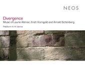 Divergence von Various Artists