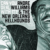 Can You Deal With It? de Andre Williams