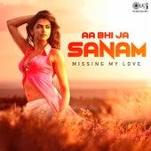 Aa Bhi Jaa Sanam: Missing My Love by Various Artists