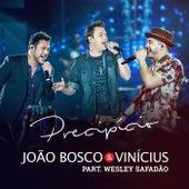Precipício de João Bosco & Vinícius
