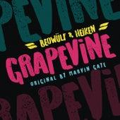 Grapevine by Heiken