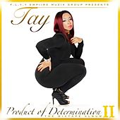 Product of Determination II by TAY