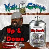 Up & Down (feat. Boogieman) von Big Scoob