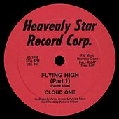 Flying High by Cloud One