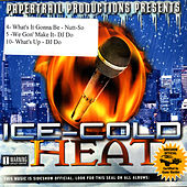 Ice-Cold Heat by Various Artists