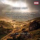 Liszt: Grandes études de Paganini, S. 141 & Études d'exécution transcendante d'après Paganini, S. 140 by Wojciech Waleczek