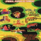 Puebla Ciudad de Cumbia, Vol. 2 de Various Artists