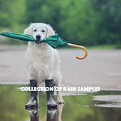 Collection of Rain Samples by Various Artists