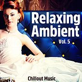 Relaxing Ambient, Vol. 5 (Chillout Music) von Various Artists