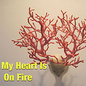 My Heart Is On Fire de Various Artists