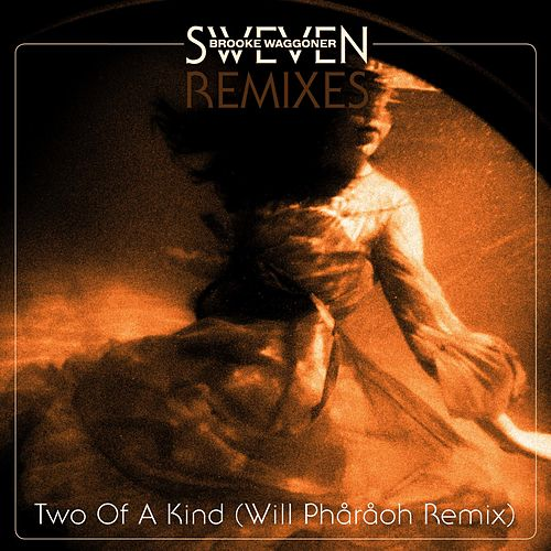 Two of a Kind (Will Phåråoh Remix) by Brooke Waggoner